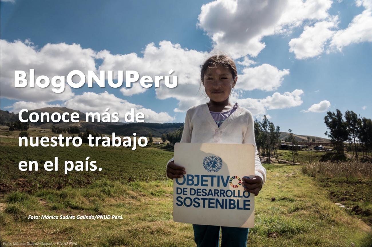 Banner blog ONU Perú